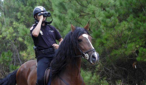 St. Paul ya no tendrá policía montada
