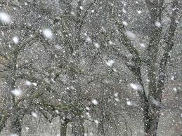 CLIMA: Nieve para algunas partes de Minnesota