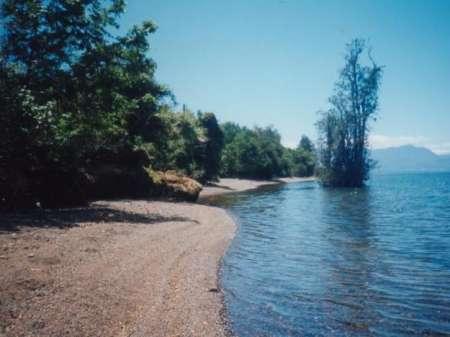 Las playas del lago Nokomis cerraron después de que los nadadores se enfermaron con E. coli