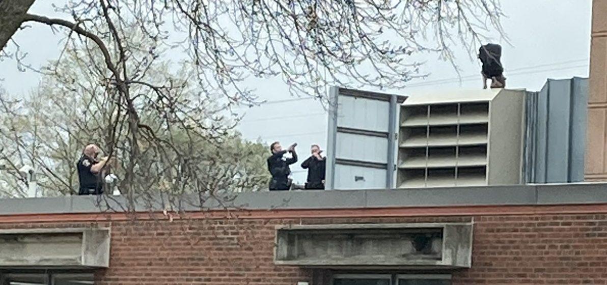 Sospechoso trata de huir por el techo